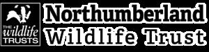 Sidebar nwt logo web